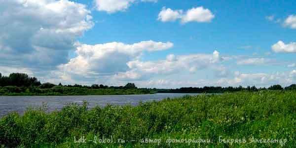 река Сухона что в Вологодской области