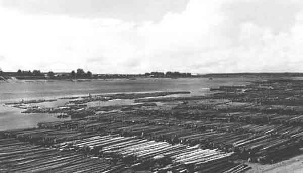 сплавы на реке Сухона