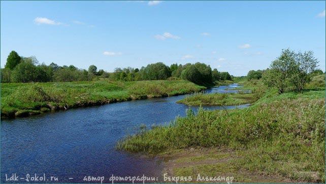 Речка Двиница — лесная красавица