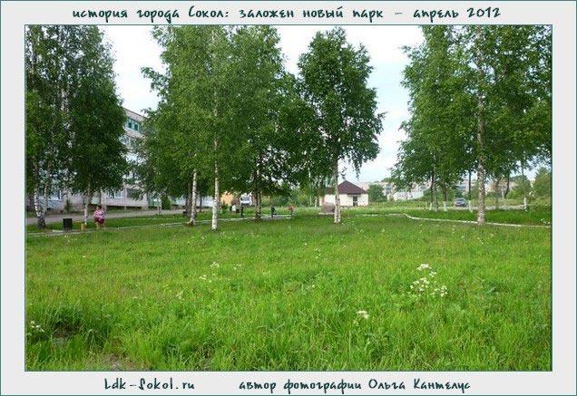 город Сокол. Городской парк: зеленый островок в городской суете