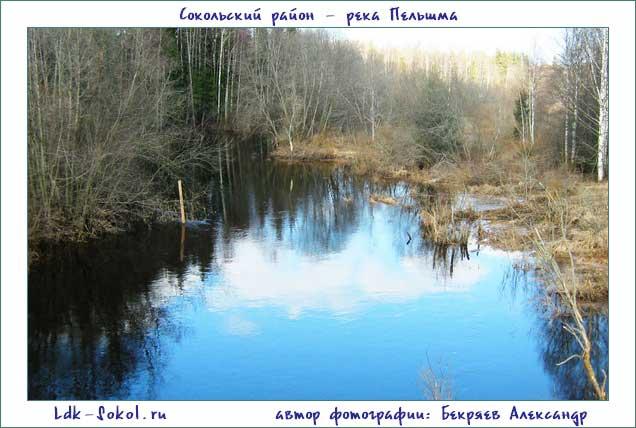 река Пельшма Сокольский район