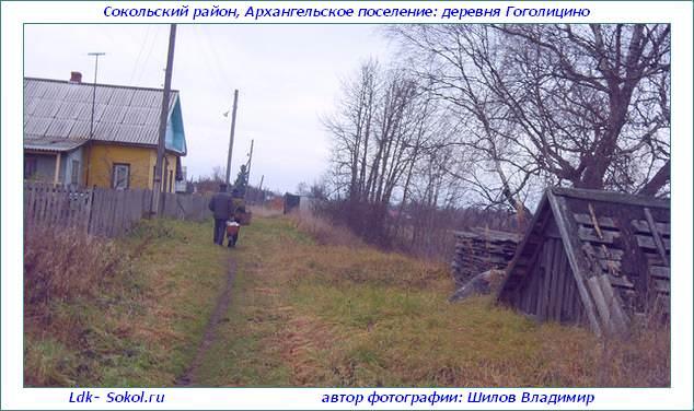Деревня Гоголицыно - сельское поселение Архангельское