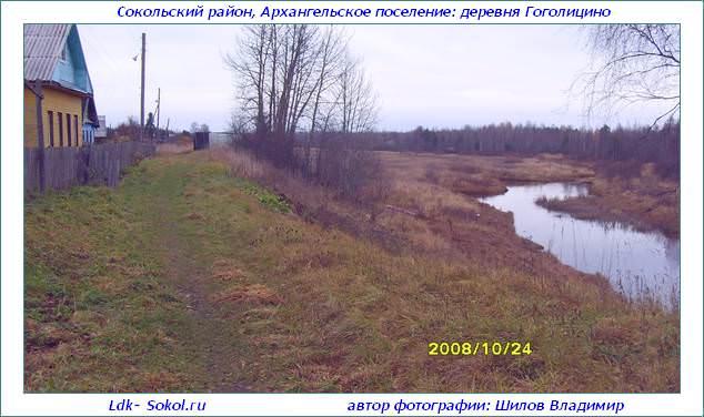 Деревня Гоголицино в Архангельском поселении