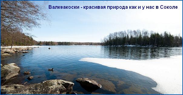 Сокол и Валкеакоски: города-побратимы