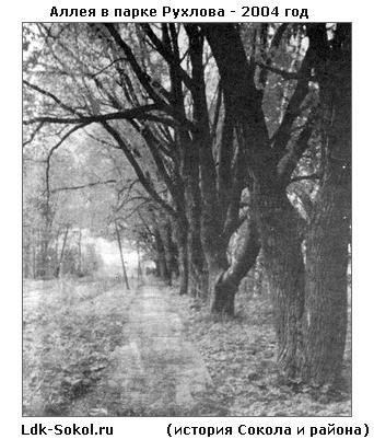 аллея в парке Рухлова