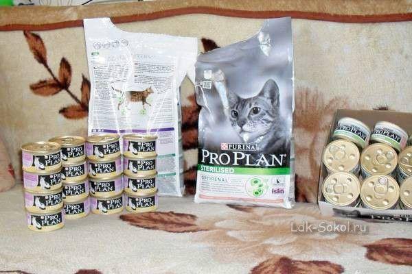 Зоовологда - Продажа кормов для собак и кошек