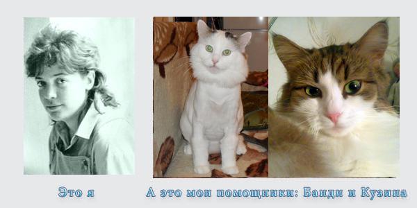 автор сайта Ldk-Sokol.ru