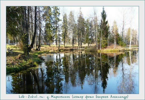 Сельское поселение Пельшемское