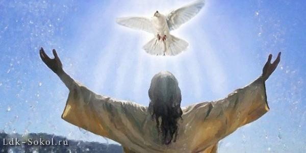 Бог - истинность и святость