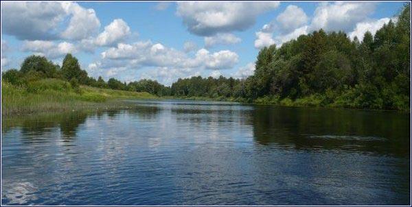 Река Двиница - лесная красавица