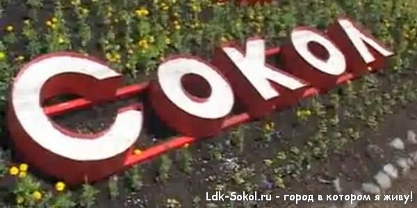 История Сокола