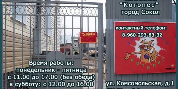 """Ветеринарная клиника """"Котопес"""" в Соколе"""
