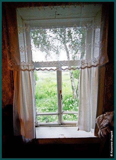 Окно дома Сибирцевых