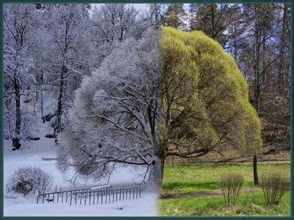 Природа меняет наряд