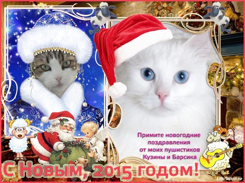 2015 - Год козы - поздравление от Кисок