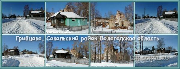 Село Грибцово Сокольский район