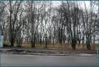 Комсомольский парк, город Сокол