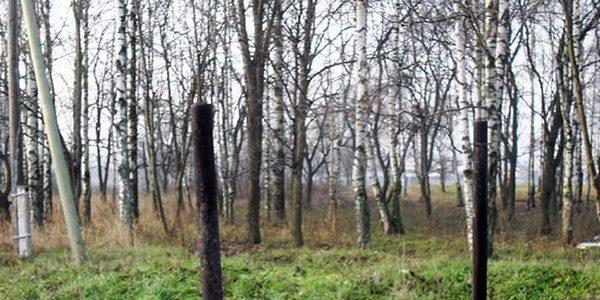 Комсомольский парк в нашем городе