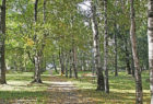 Александровский сад - город Кадников