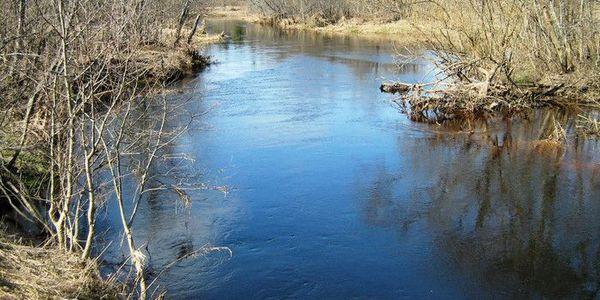 Река Пельшма, что в Сокольском районе