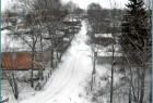 Карпово - деревня в черте горда