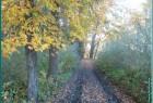 Осень в городе Сокол