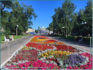 Аллея на проспекте Победы Вологда