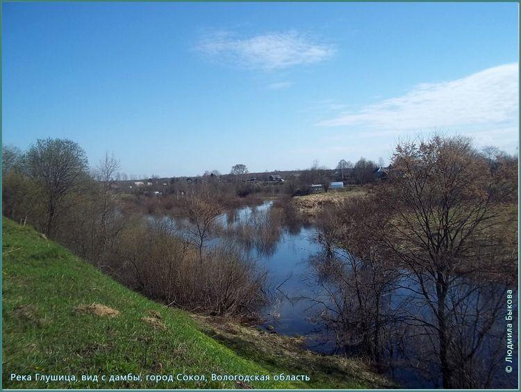 Река Глушица, Сокольский район, Вологодская область