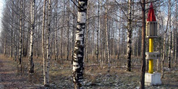 Парк Ветеранов в микрорайоне Печаткино