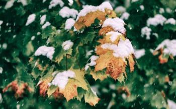 Зима зовёт
