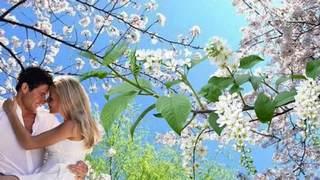 Секрет весны