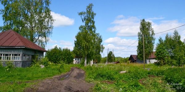Деревня Сосновец в Сокольском районе