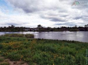 на берегу реки Сухоны