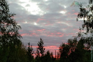 вечерний город, Сокол Вологодская область