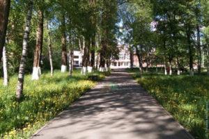 Пионерский сквер возле Школы искусств
