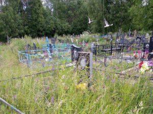 Кладбище возле деревни Пятино, Сокольский район
