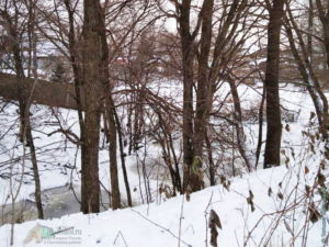 Микрорайон ЛДК (речка Лещевка, январь 2021)