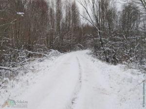 Дорога через сад. товарищества, д. Есипово до д. Пятино